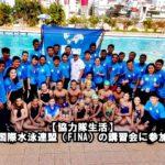【協力隊生活】国際水泳連盟(FINA)の講習会に参加